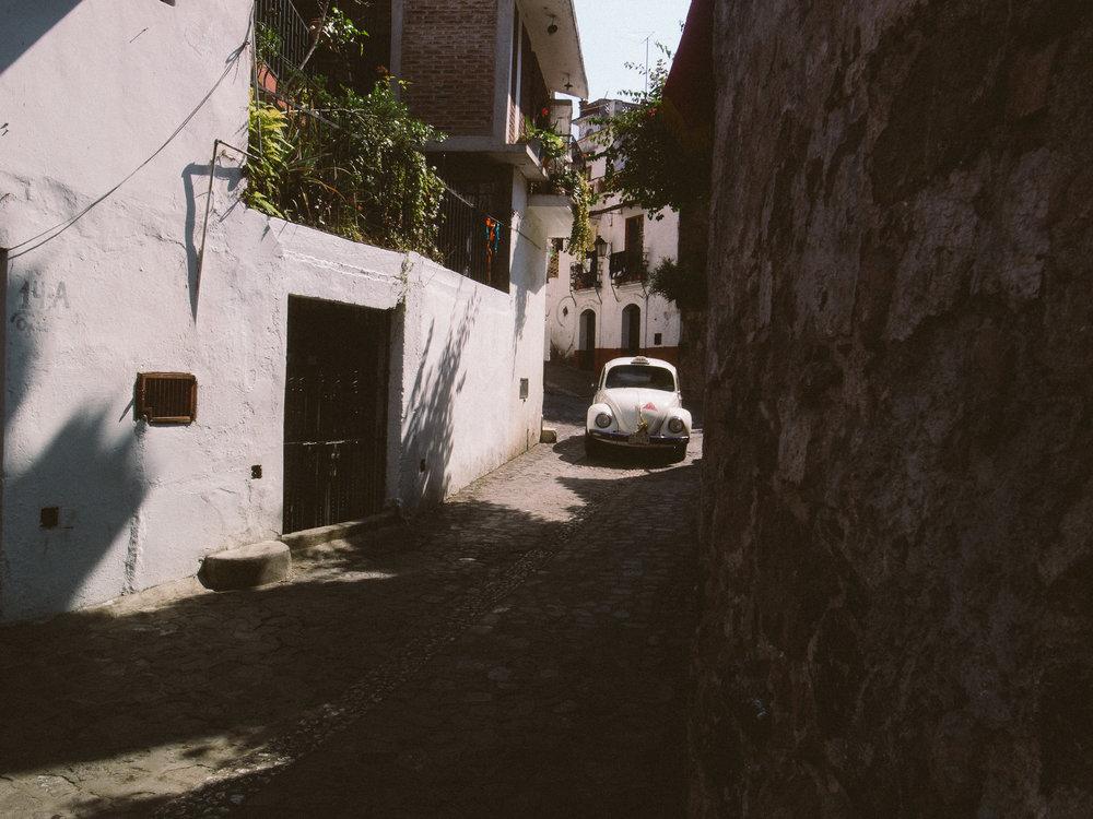 Taxco Beetles-2.jpg