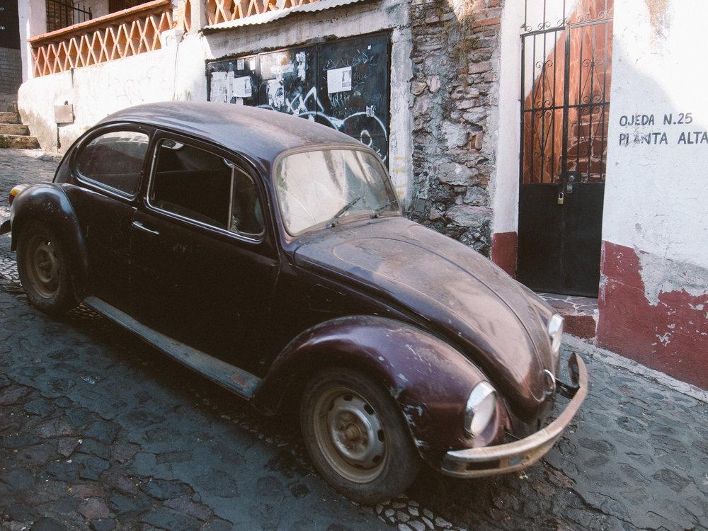 Taxco Beetles-3.jpg