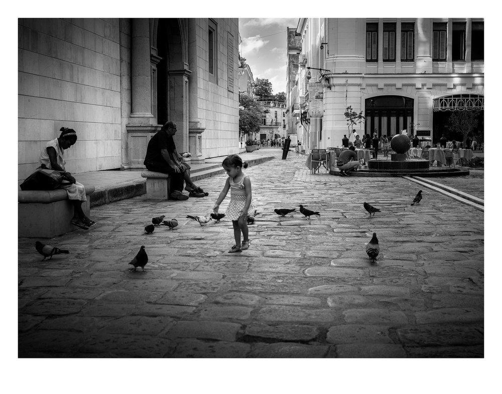 little-girl-pigeons.jpg