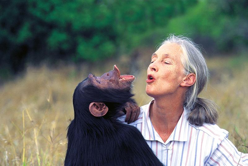 Dr.-Jane-Goodall-Australia.jpg