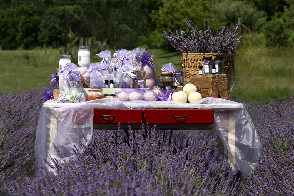 Our full line of Lavender Vista products