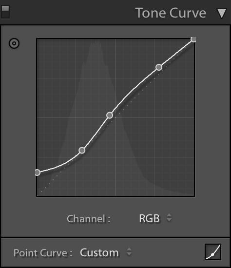 Lightroom Tone Curve.jpg