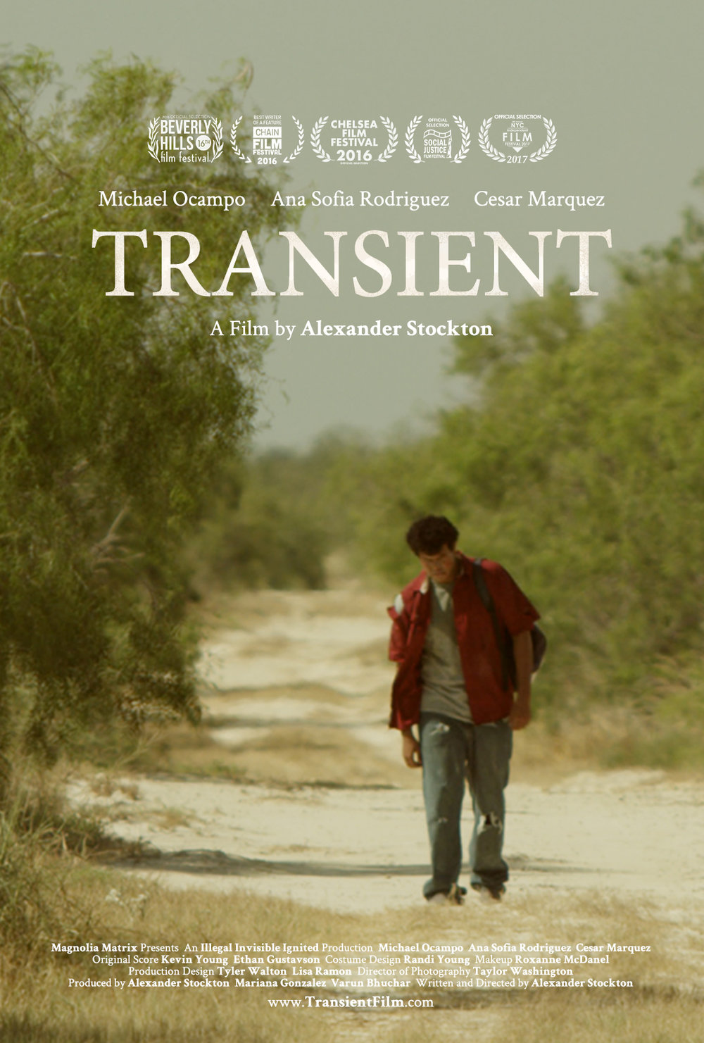 Transient_Poster_Small.jpg