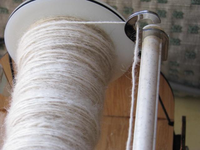 Teeswater wool 002.JPG