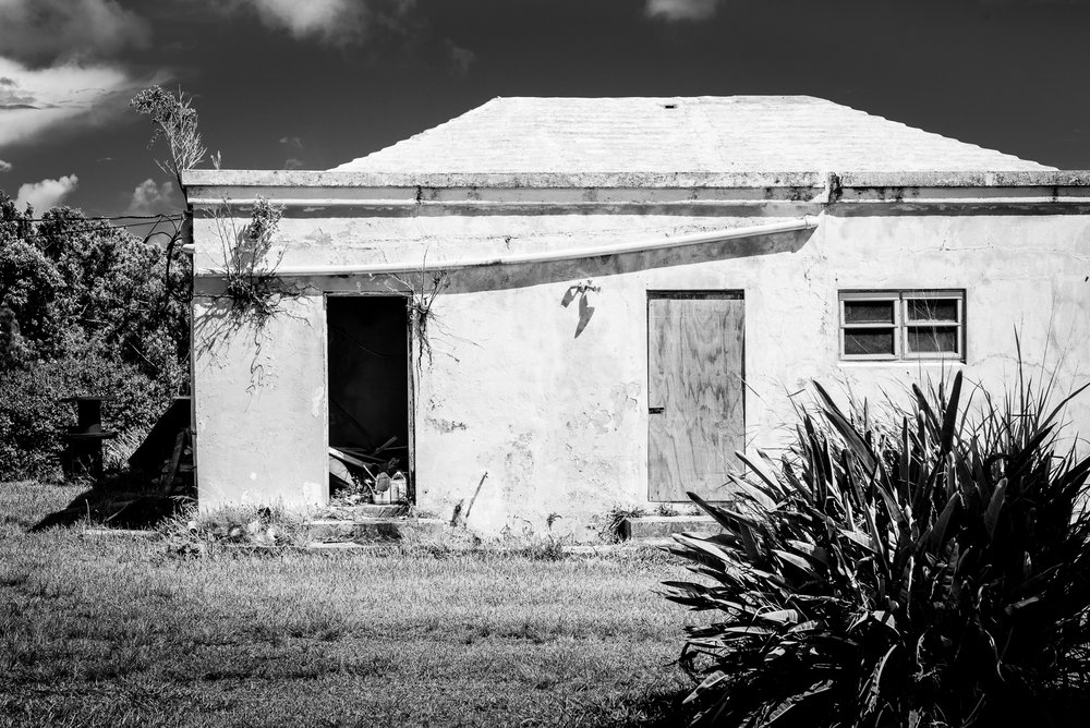JohnColePhoto-Bermuda-18.jpg