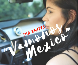 vamonos-mexico-the-knitts.png