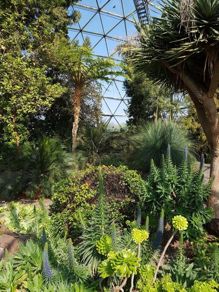 botanical gardens dussledorf.jpeg