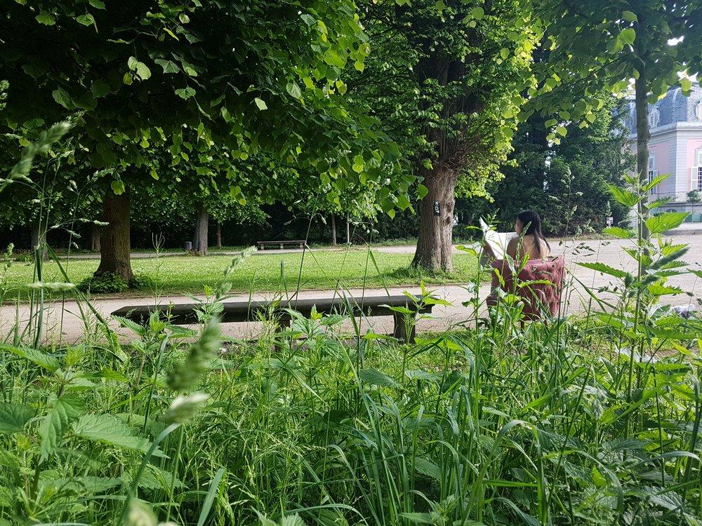 Lynda sparshatt princess diaries shoot pink cocktail chair gardens