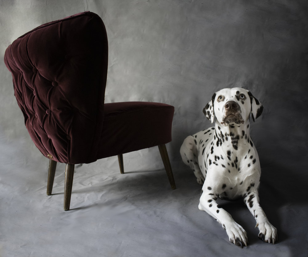 Burgundy velvet accent chair