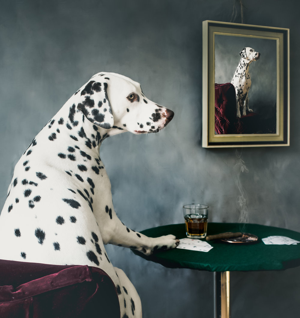dog playing poker coolidge lynda sparshatt chairs.jpg