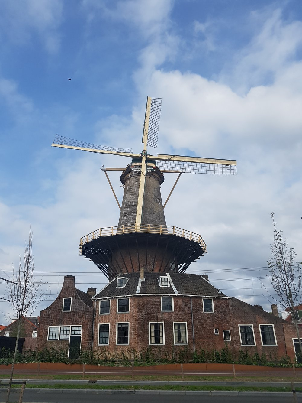 the windmill in Delft