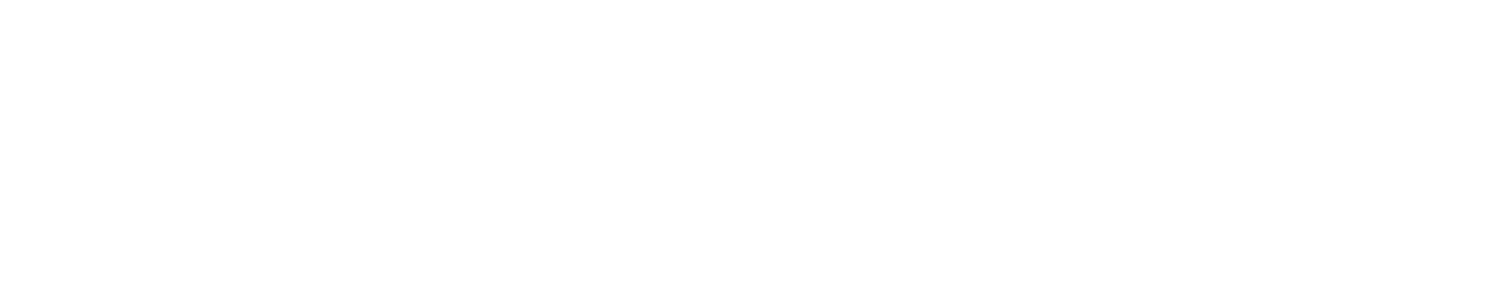 The Original Marini's Empanada House — Houston