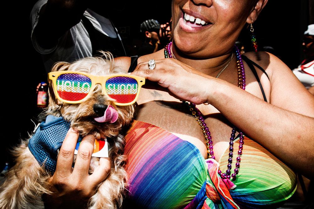 pride march puppy.jpg