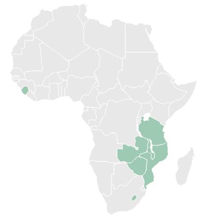 Countries - - Lesotho- Malawi- Mozambique- Sierra Leone- Tanzania- Zambia- Zimbabwe