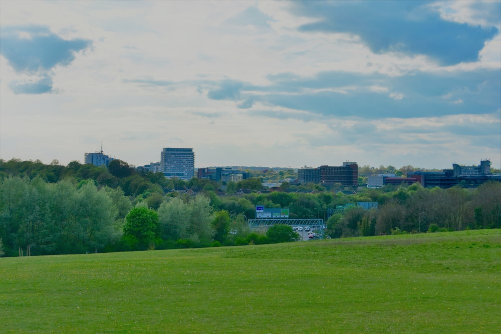 Basingstoke from Eastdrop