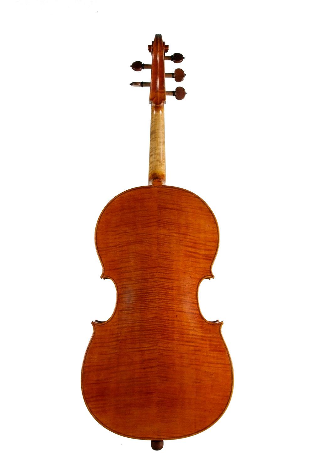 Amati 5-String cello Back.jpg