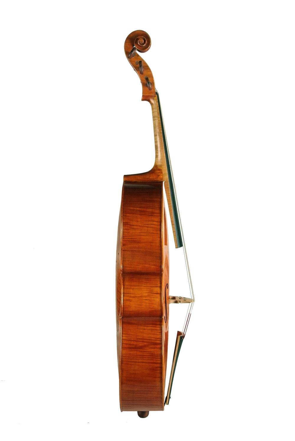 Amati 5-string cello Side.JPG