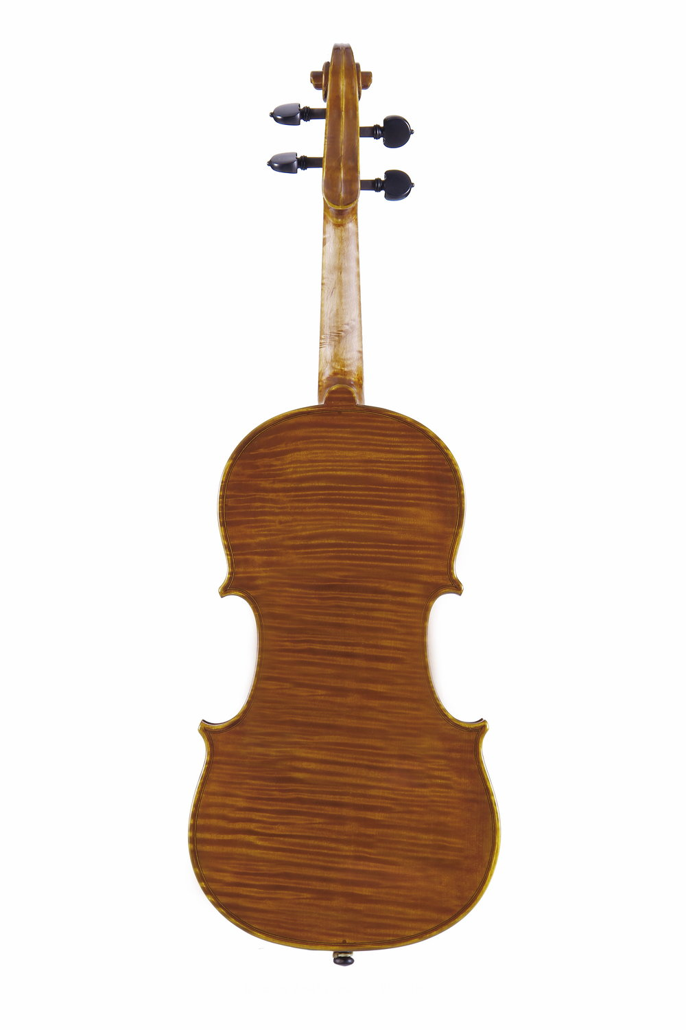 Amati model BQ Violin Back.jpg