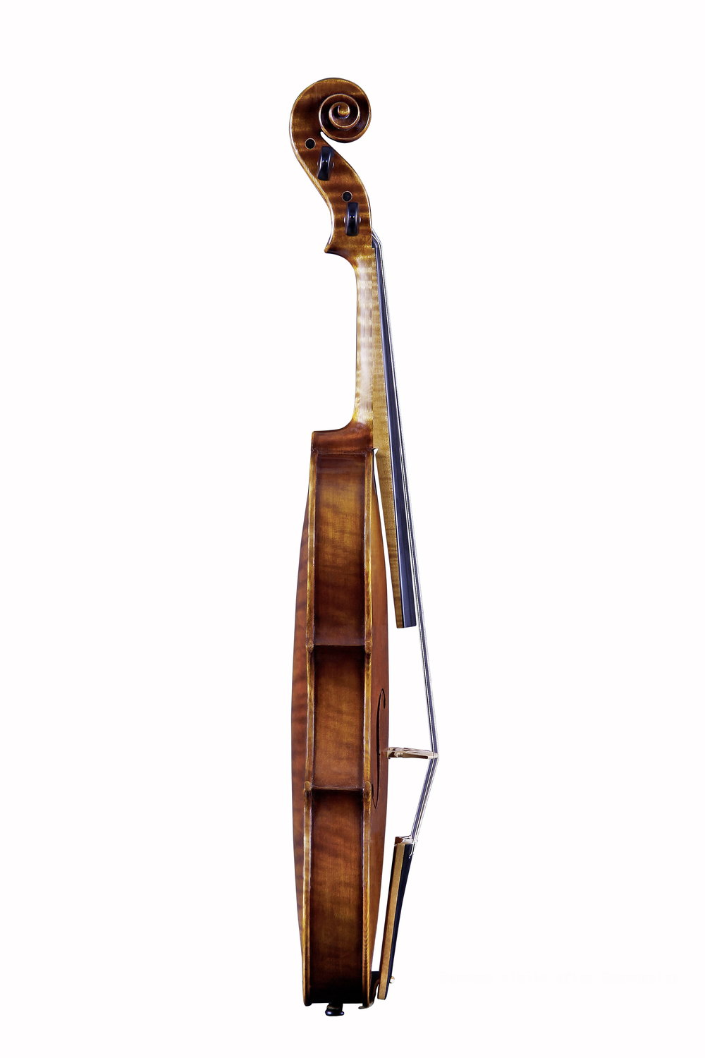 Guarnerius model BQ Violin Side.jpg