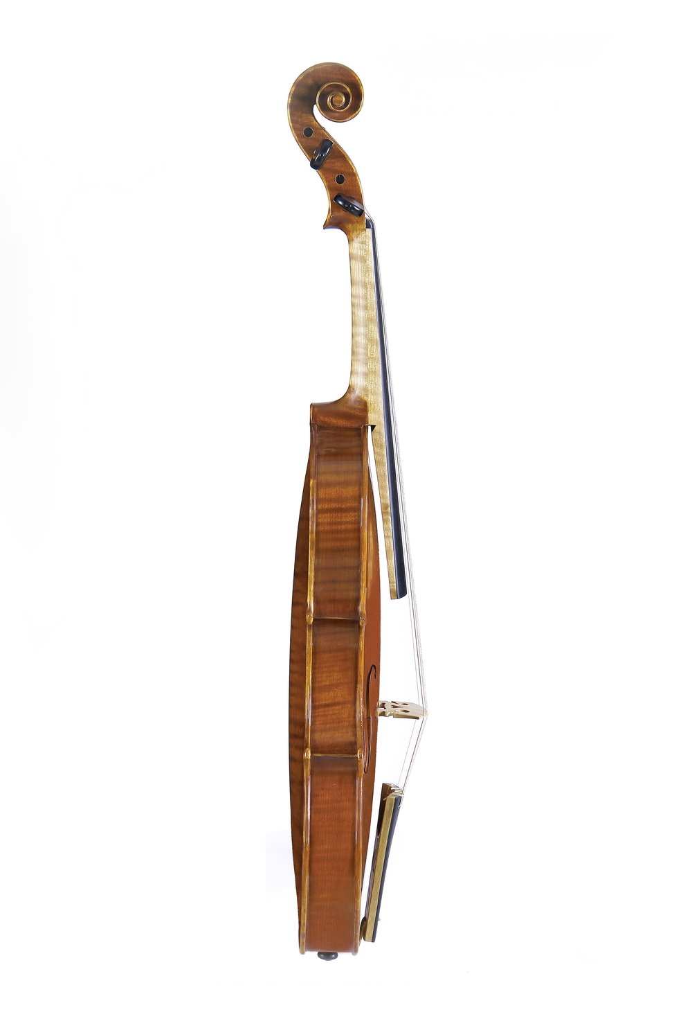 Stradivarius Model BQ Violin Side.jpg