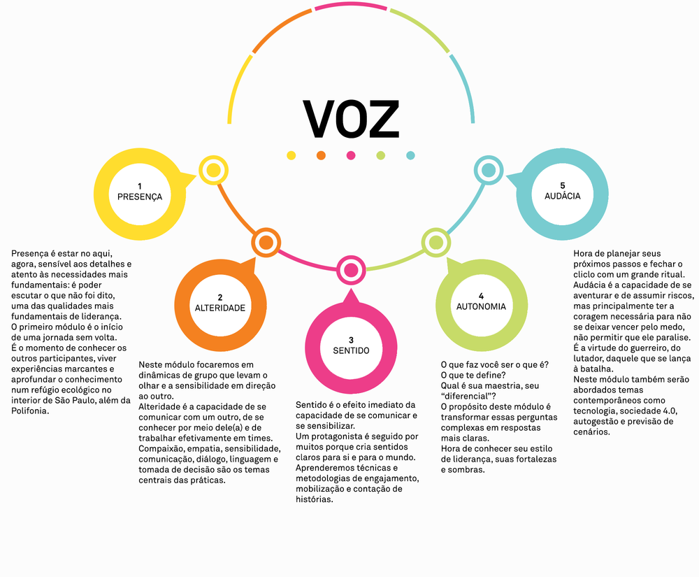 Infográfico-módulos-VOZ-2018.png