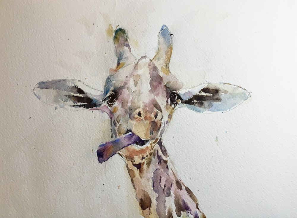"Cheeky giraffe.   Michele Clamp watercolor.   11""x14"""