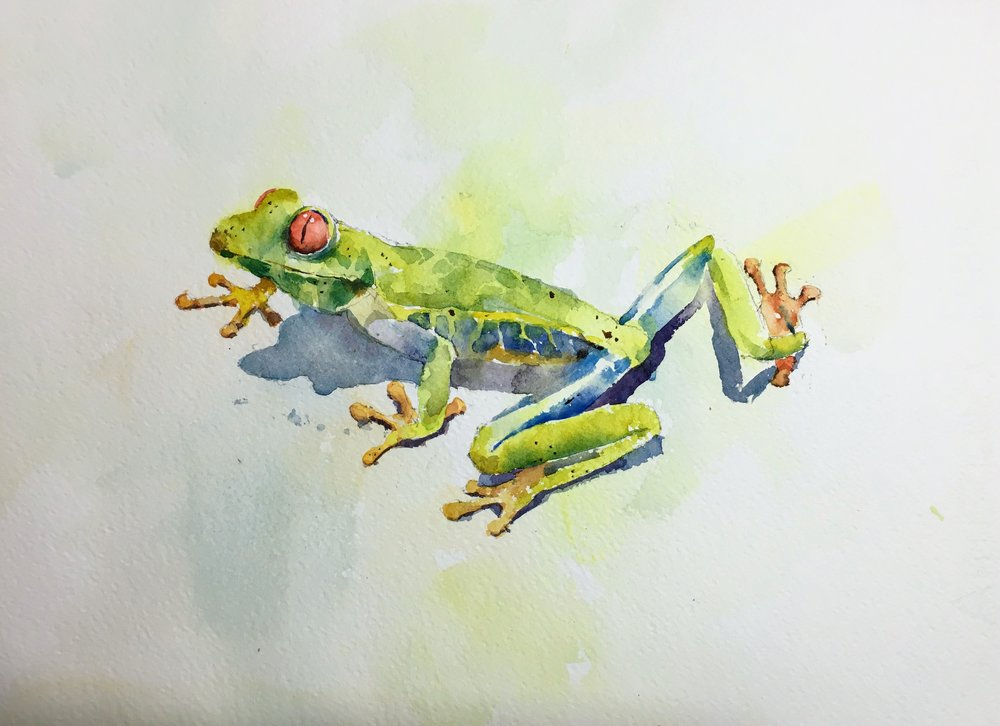 frog_watercolor.JPG