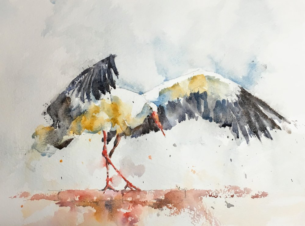 stork_watercolor.JPG
