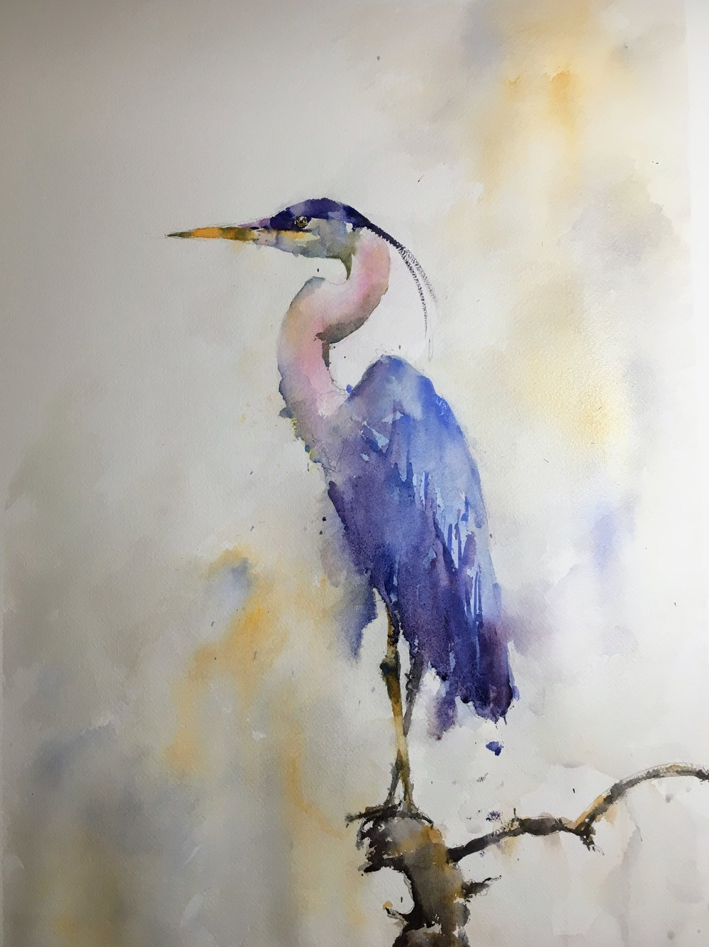blue_heron_watercolor.JPG