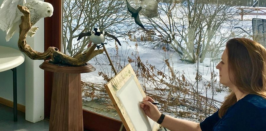 Demo painting of a snowy owl mount at Maine Audubon, Portsmouth, Jan 2018