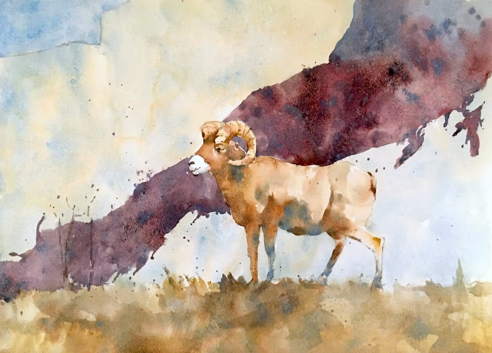 "Ram. Michele Clamp. Watercolor 13""x19"""