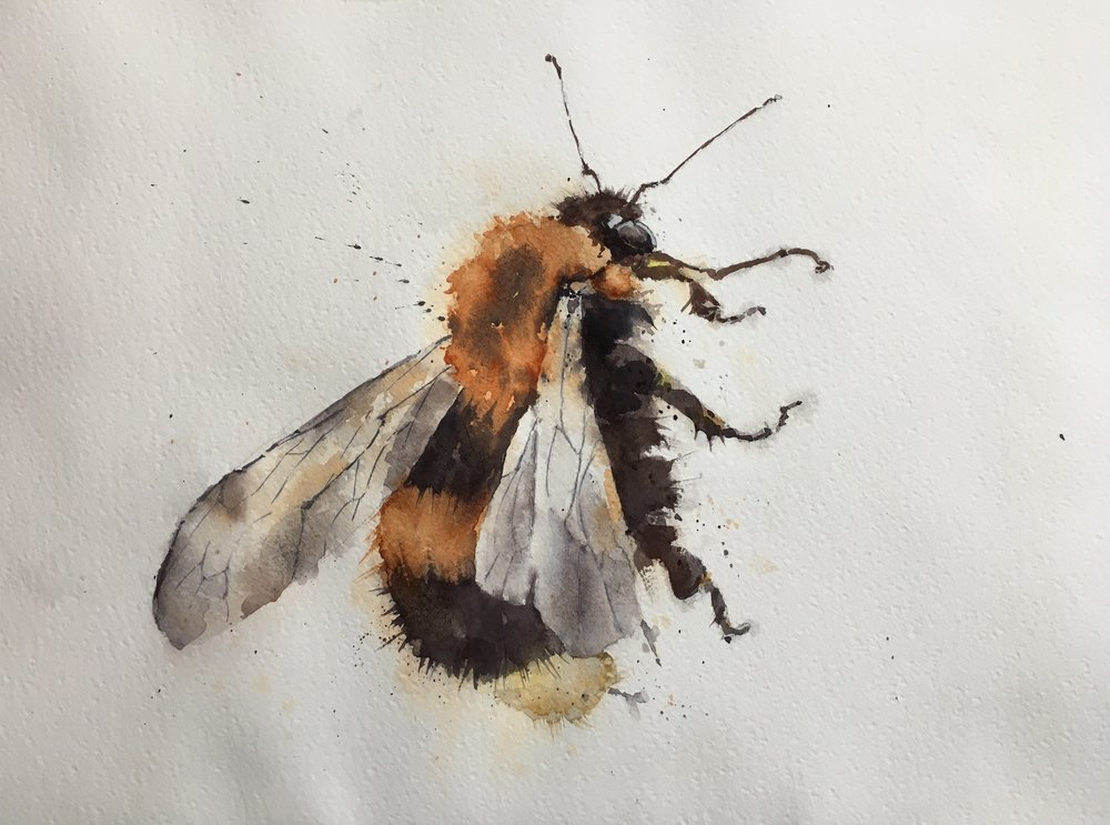 "Bee Too.  Michele Clamp.  Watercolor.  11""x14"""