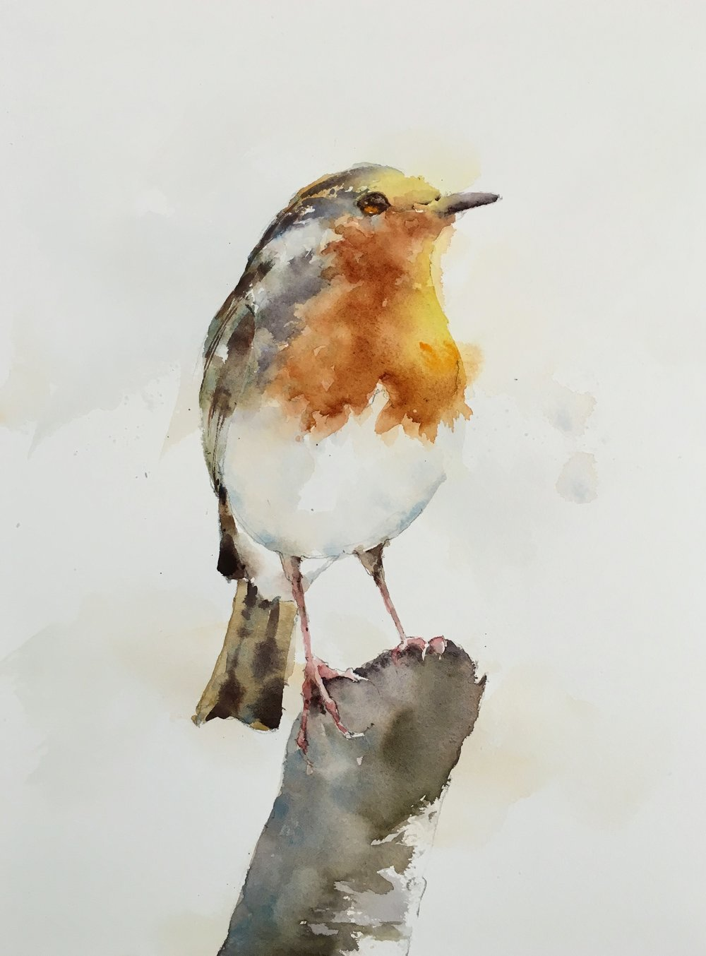 "Robin.  Michele Clamp.  Watercolor 14""x11"""
