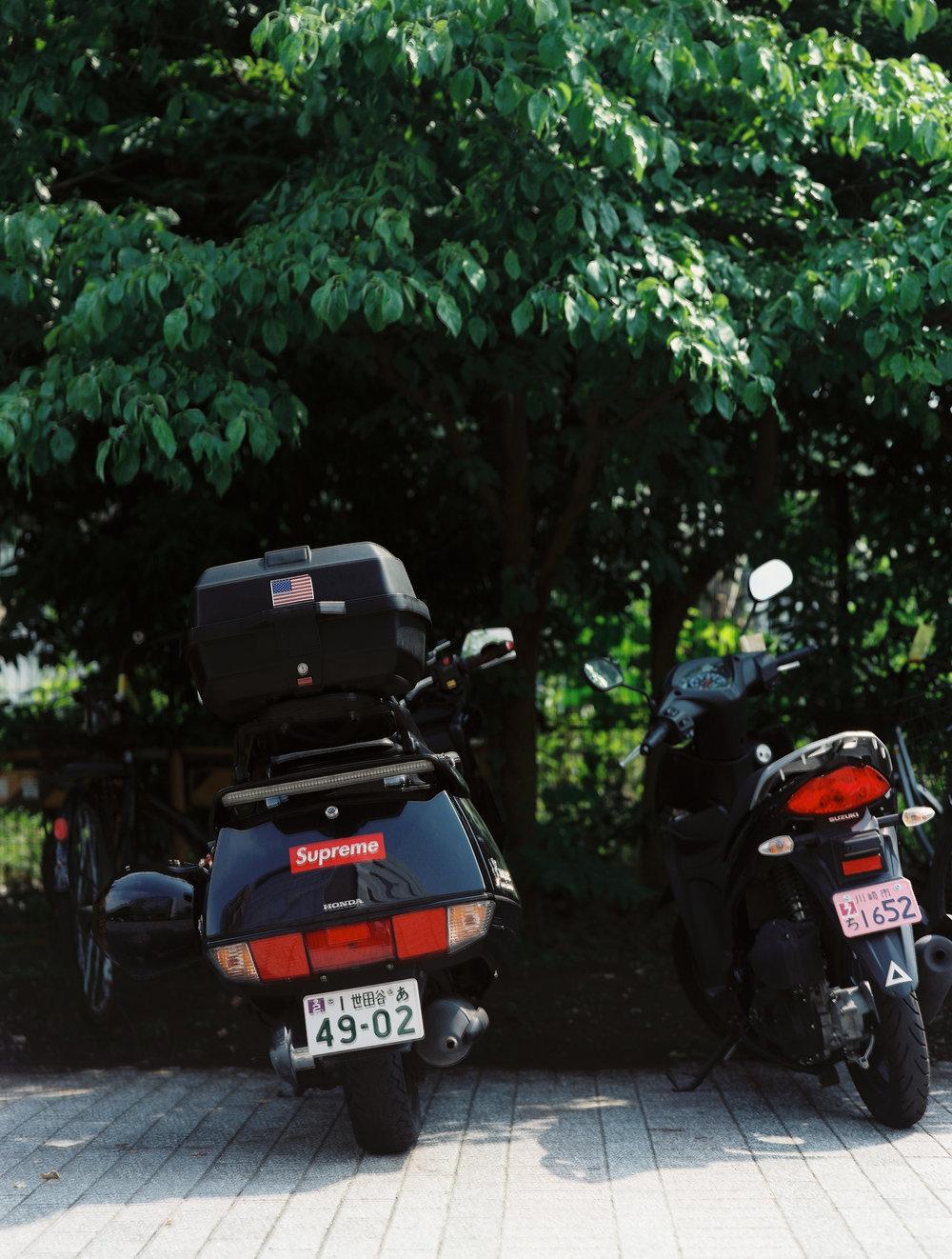 Shinjuku Gardens_Portra 160_0 9_.jpg