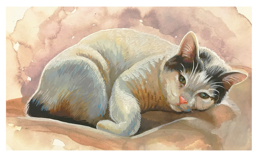 Pink kitty.jpg