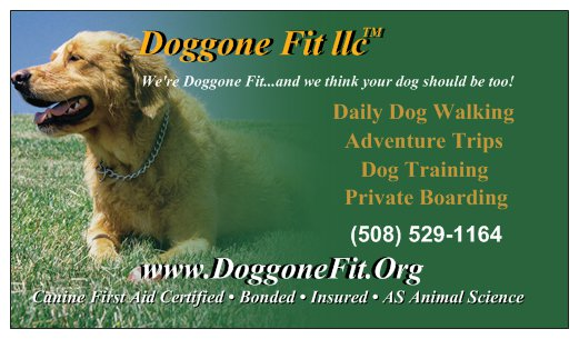 Doggone Fit™ llc