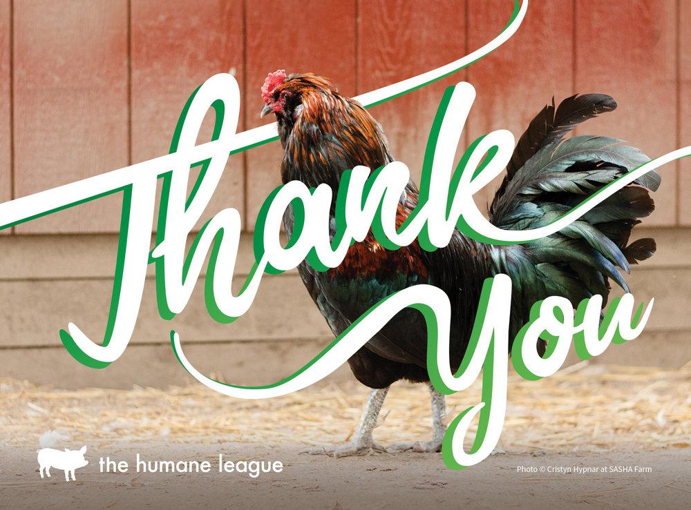 THL17-thank-you-postcard-1.jpg