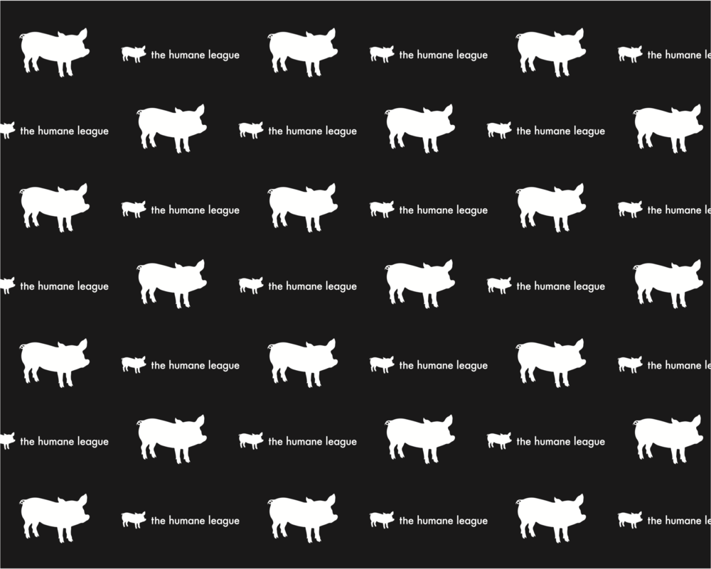 pattern for background at THL events