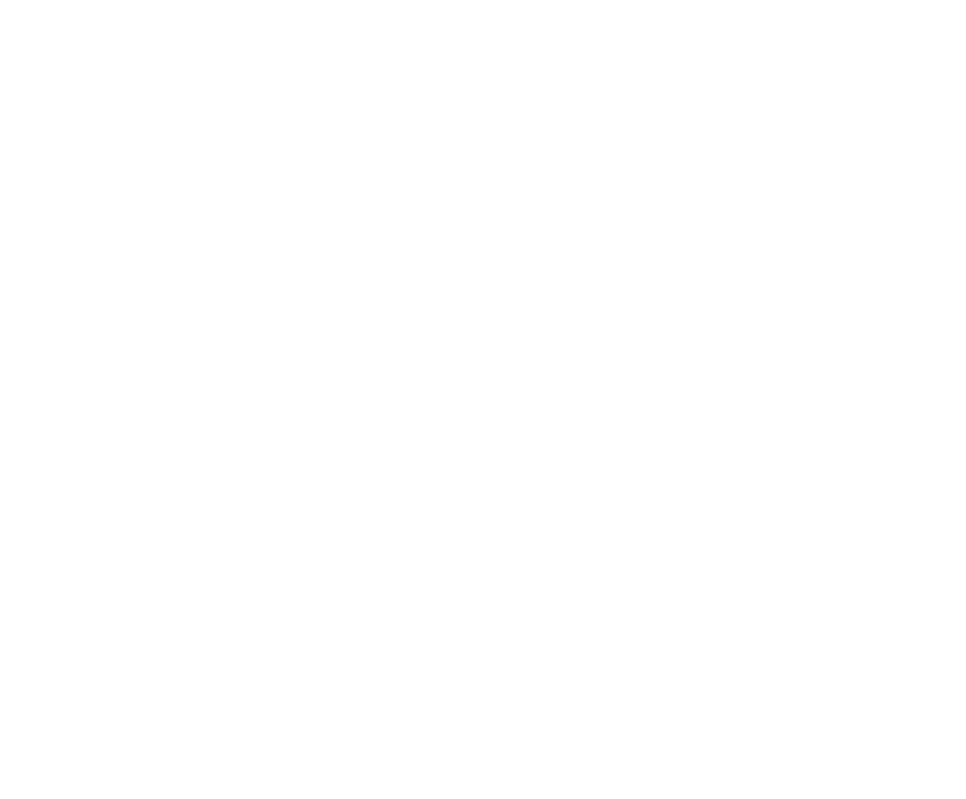 BubbleFish Media Logo White.png