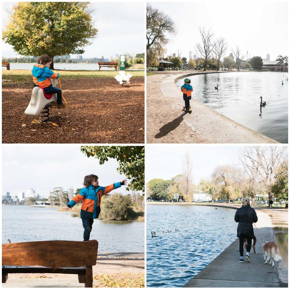 albert park lake 1.jpg