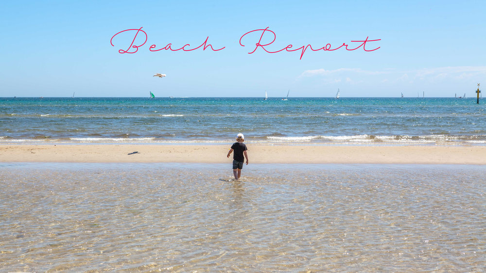Mamma Knows South - Beach Report