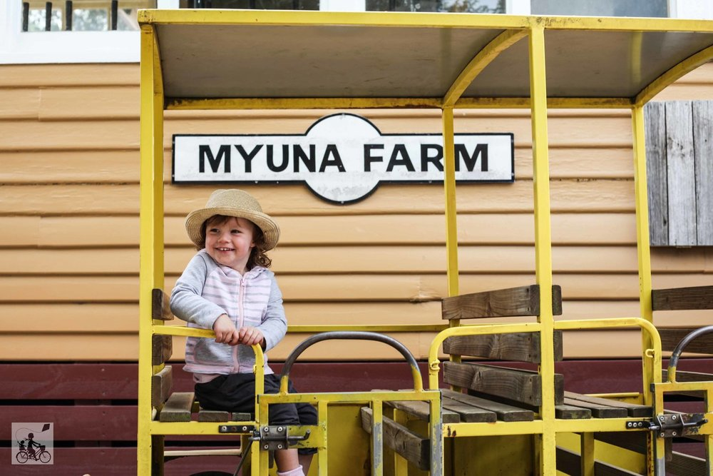mamma knows south - myuna farm, doveton