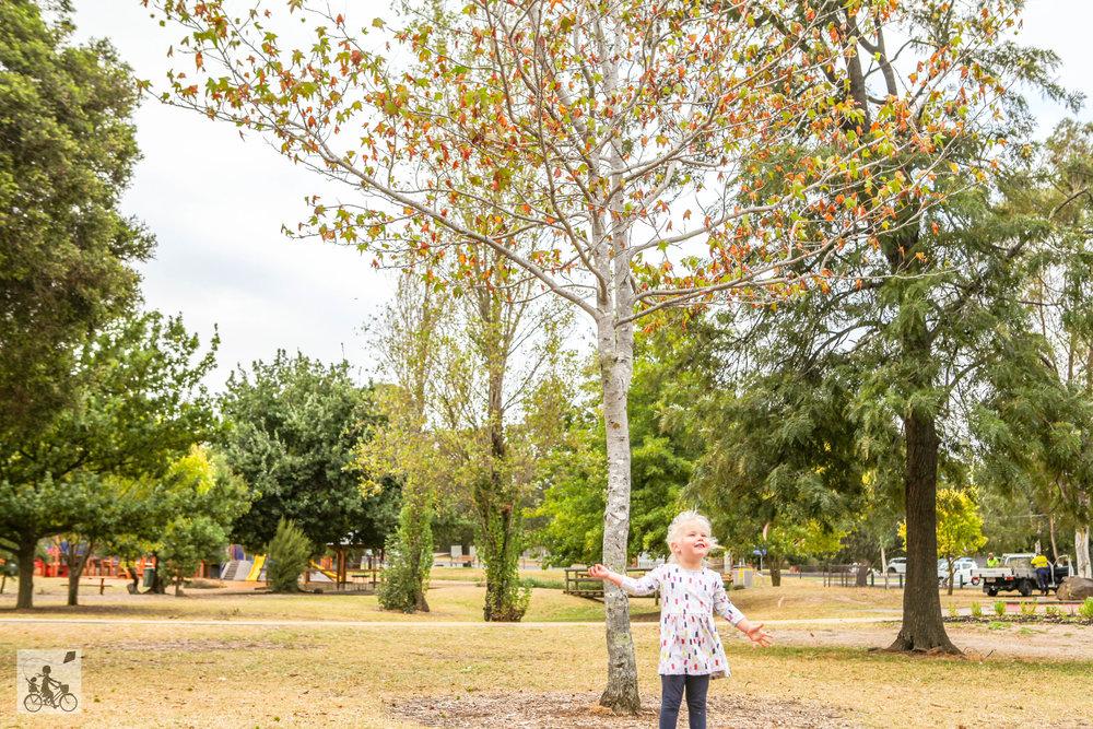 Ballam Park - Autumn (16 of 20).jpg