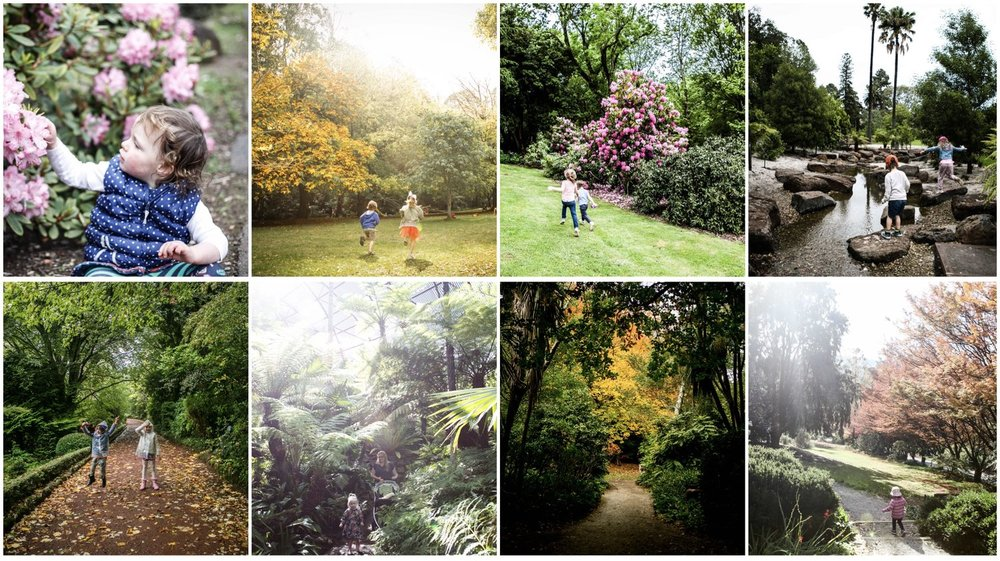 Gardens+Excerpt.jpg