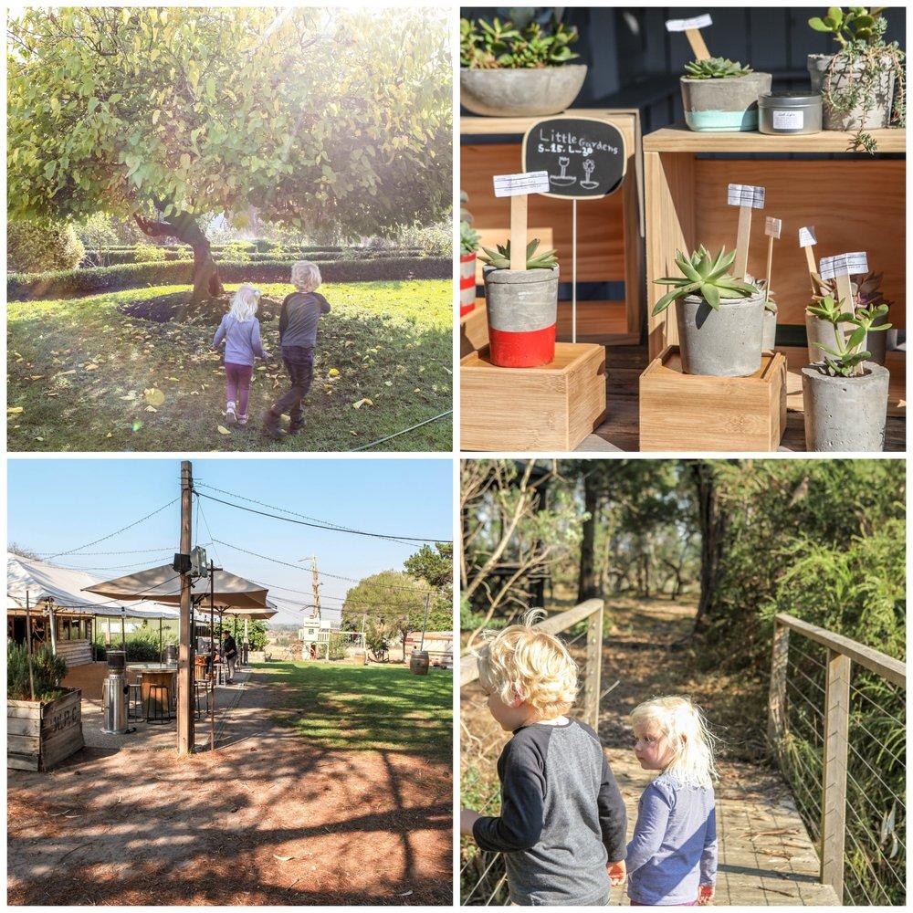 harvest cafe @sages cottage, baxter - mamma knows south