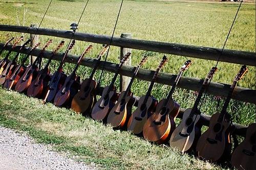 GuitarCamp8.png