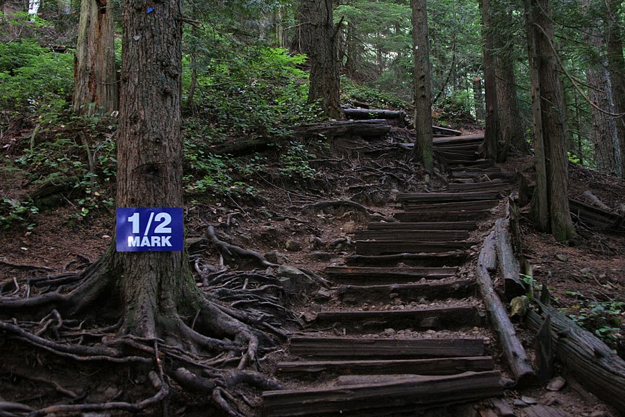 From http://3.bp.blogspot.com. The ENTIRE trail is like this.