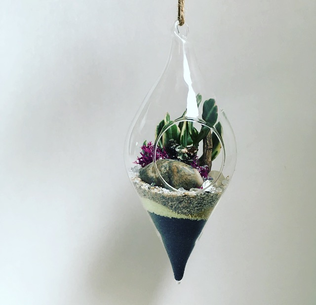 Hanging Diamond Terrarium Hanging Diamond 8