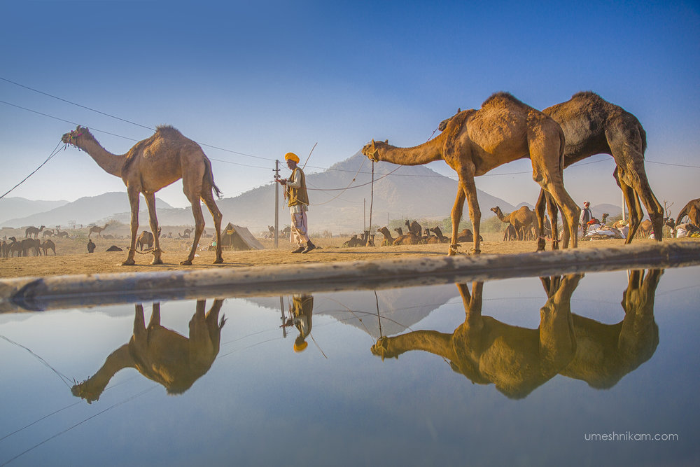 umeshnikam_rajasthan_pushkar_reflection