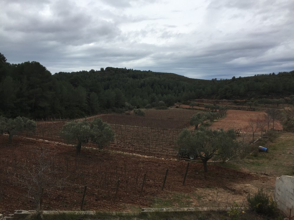 Bonastre, Catalunya